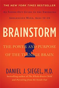 Siegel,Dan_book2